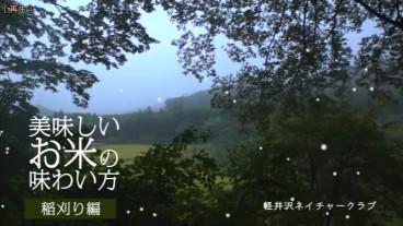 » 軽井沢ネイチャークラブの動画