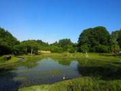 仲間募集‼塩沢村で一緒に暮らしませんか?