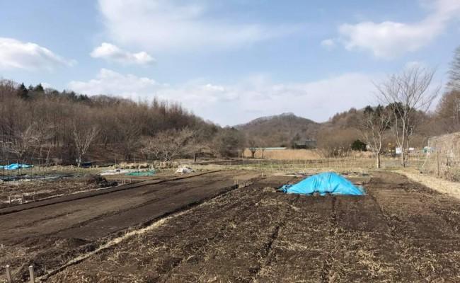 » 畑と田んぼの利用者募集 2017/4/14