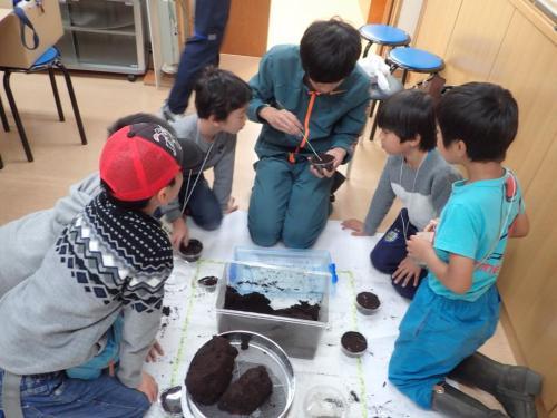 » 軽井沢昆虫クラブ活動 2018年3月18日(日) クワガタの飼育教室