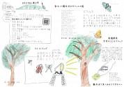 第41回 軽井沢昆虫クラブ定例会 2021年7月25日(日)