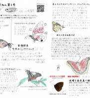第43回 軽井沢昆虫クラブ定例会 2021年9月26日/10月10日(日)